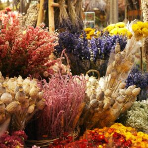 flowers, flower collection, bouquet